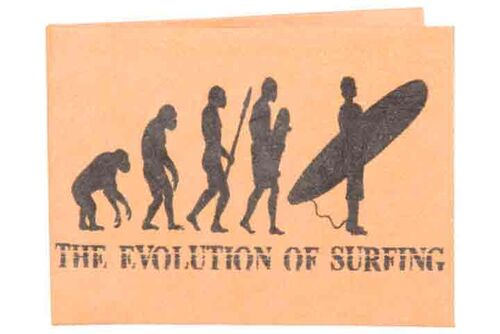 Carteira | Evolution of Surf